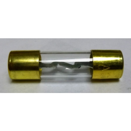 AGU60 Fuse - 60amp